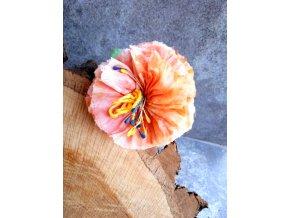 Květ v tónech oranžové