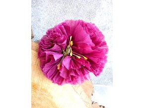 Květ tmavě růžový