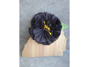Květ černý