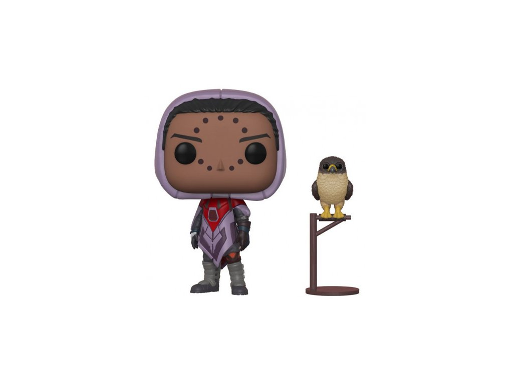 Destiny Funko POP figurka - Hawthorne and Hawk