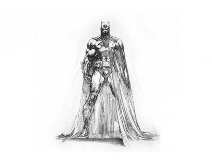 Batman - tričko - Hush v1