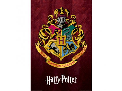 Harry Potter - plakát - Bradavická škola čar a kouzel