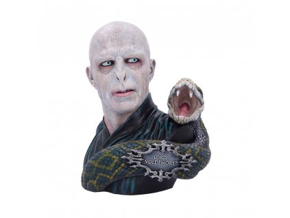 Harry Potter busta Lord Voldemort (1)
