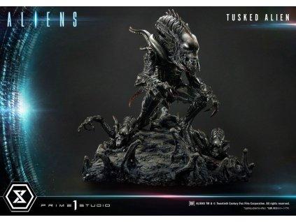 Aliens Premium Masterline Series socha Tusked Alien (1)