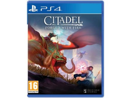 PS4 Citadel Forged with Fire
