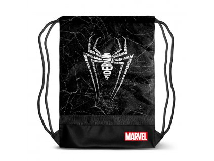 6212 spiderman web gymbag