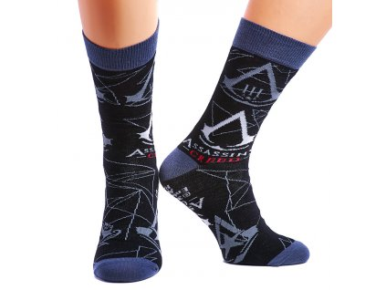 Assassin's Creed Legacy Socks 002(1)