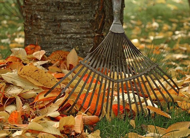 Činnosti spojené s podzimní údržbou trávníku