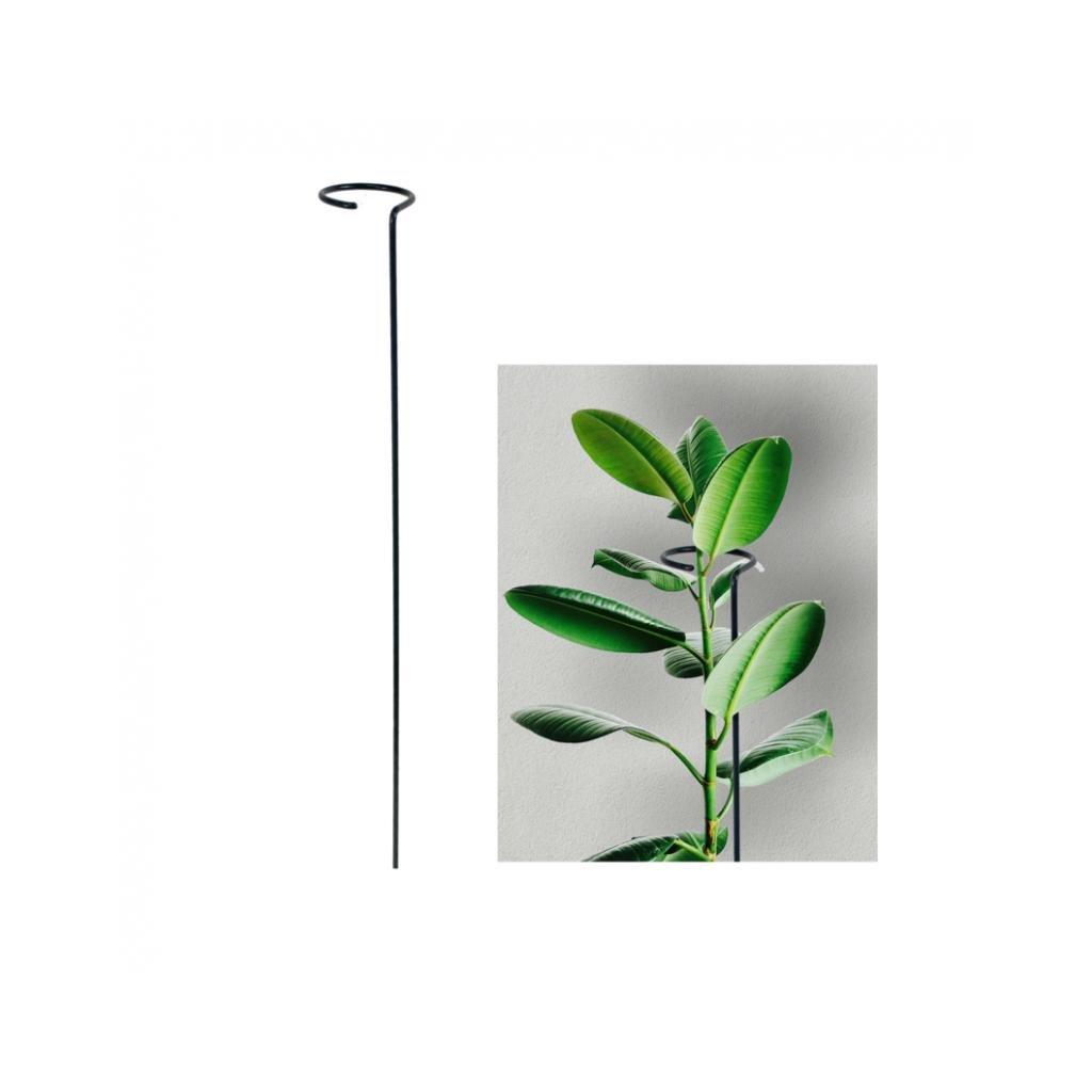 stonkova opora pro rostliny s malym ockem