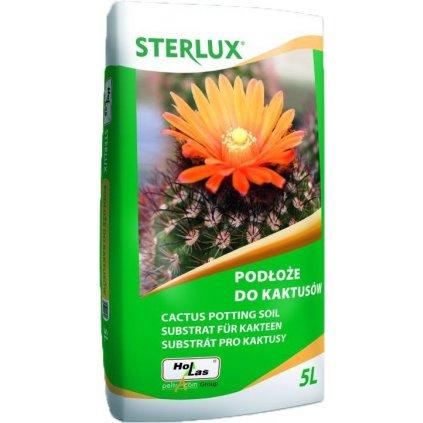 sterlux kaktusy