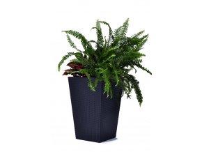 17192301 rattan style planter medium 7172 rgb