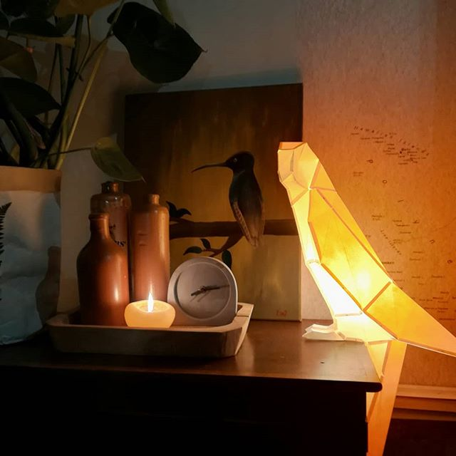 Papírová lampička papoušek
