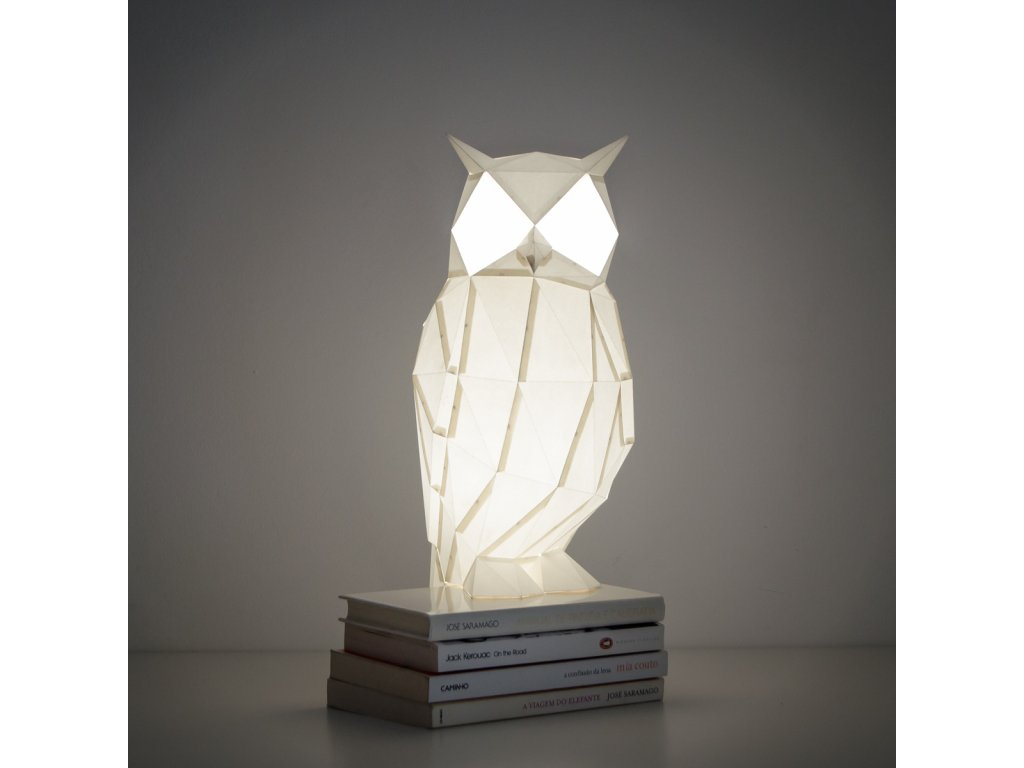 night owl 01 DSC 0138 c