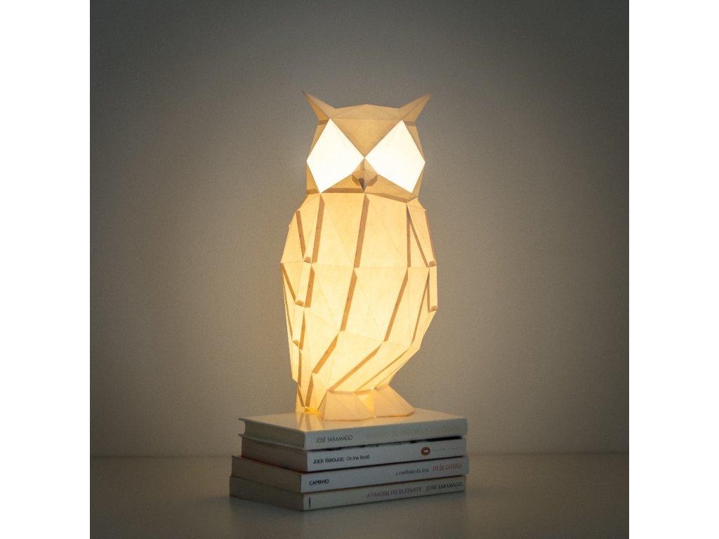 night owl 06 DSC 0135 c