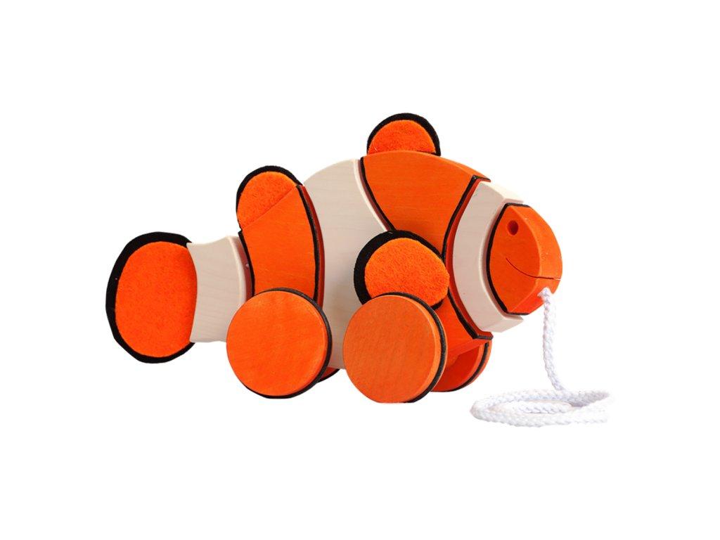 PL clownfish 3D