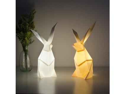 rabbit 5 DSC 0239 a