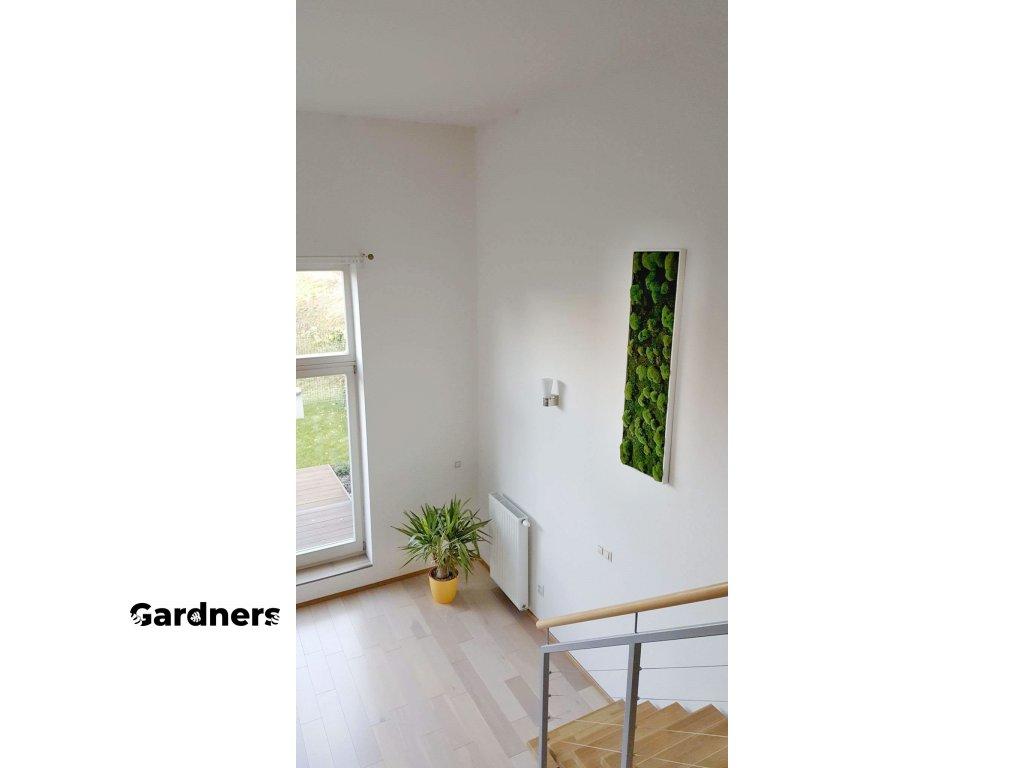 Gardners.cz mechový obraz (1)