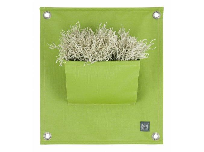 Kapsář na květiny AMMA 50x45 cm, zelená