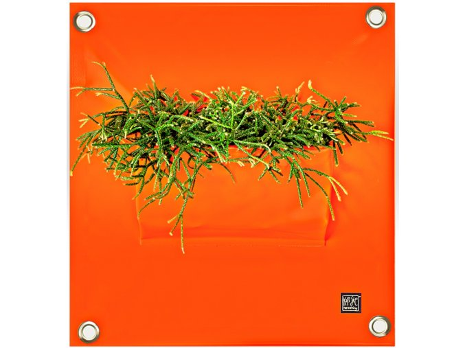 Kapsář na květiny PEVA 50x45 cm, oranžová