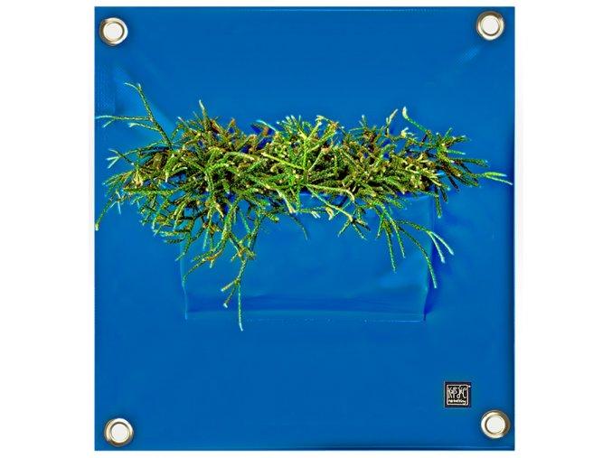 Kapsář na květiny PEVA 50x45 cm, modrá