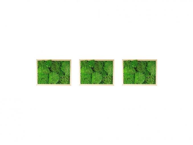 1024x768 Produkt eshop Mechové obrazy (1)