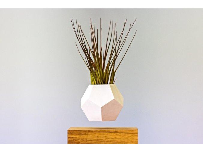 Levitující květináč Flyte Lyfe Planter  Rostlina zdarma