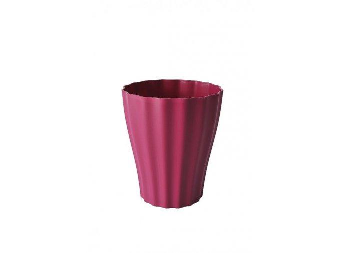 ola purpurova z1
