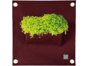 Kapsář na rostliny THE GREEN POCKETS AMMA 50x45 cm, vínová