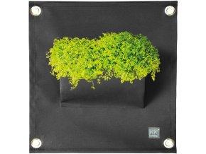 Kapsář na květiny AMMA 50x45 cm, černá
