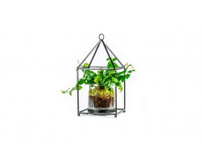 Kovový domeček se skleněným květináčem - výška 26 cm - osázené