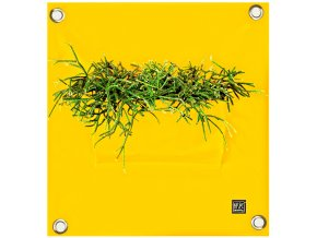 Kapsář na květiny PEVA 50x45 cm, žlutá