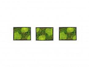 Set 3 mechových obrazů 13x18 z kopečkového mechu v kombinaci s plochým, černá