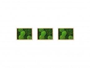 1024x768 Produkt eshop Mechové obrazy