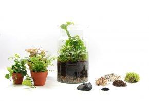 Gardners.cz Skleněná váza DIGITALIS se zúženým otvorem výška 25 cm, průměr 15 cm OSÁZEJ SI SÁM1
