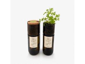 Grow Bottle - Petržel