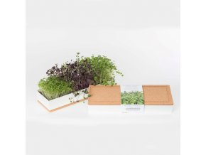 Grow Box Trio - Ředkvička, Brokolice, Rukola