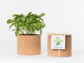Grow Cork Pot - Bazalka