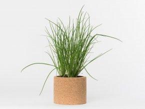 Grow Cork Pot - Pažitka