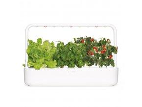 SG9 white lettuce basil tomato 1200x1200 16362211 c916 41f3 bd3b 551a09cce48a