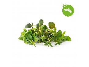 Italian Herb Mix 1200x1200px icon 1200x