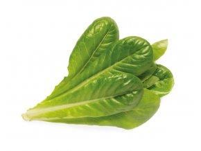 romaine lettuce 1200x960