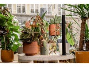 Osvětlení pro rostliny Mother PlantSpectrum16, černá