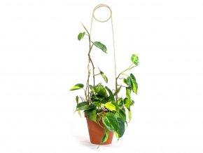 Kovová vzpěra k rostlinám, výška 70 cm