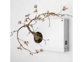 Obraz z živých rostlin Artkami Sinistra neosázený, bílá