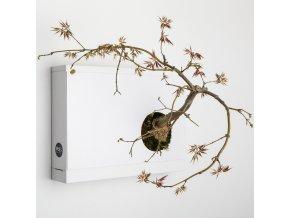 Obraz z živých rostlin Artkami Destra neosázený, bílá