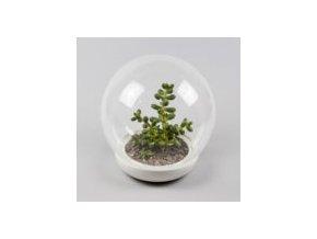 Biosféra skleník, malá