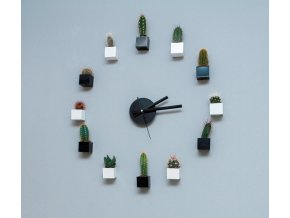 Hodiny z magnetických květináčů s kaktusy, vlastní výběr barev