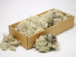 Gardners.cz Stabilizovaný lišejník 0,5 kg (0,0625 m2), přírodní