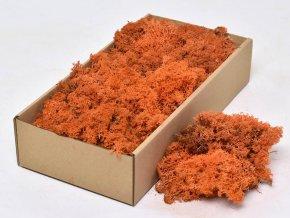 Gardners.cz Stabilizovaný lišejník 0,5 kg (0,0625 m2), oranžová