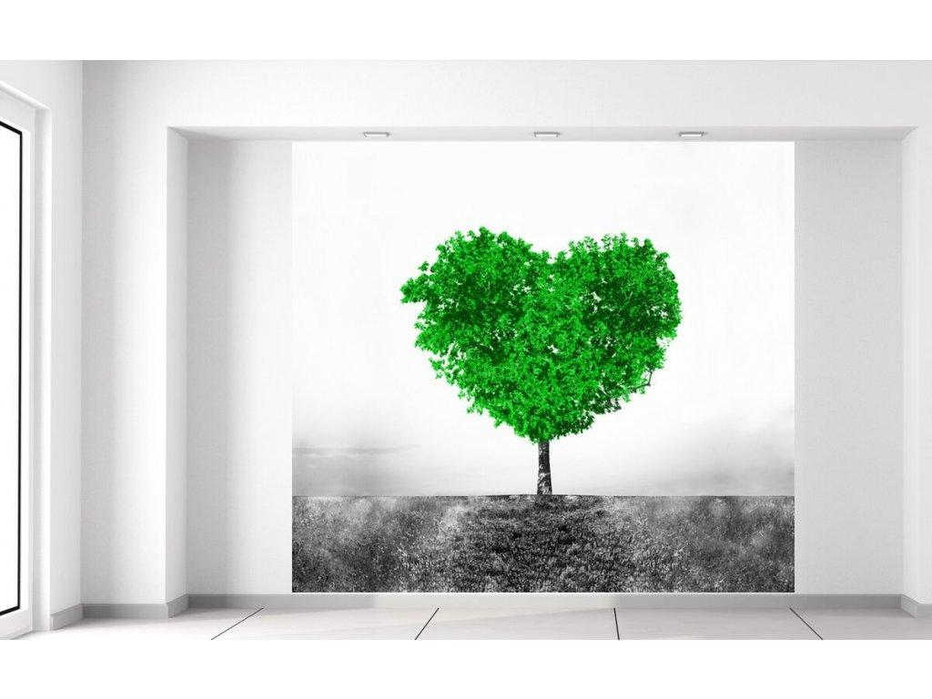 Fototapeta Zelený strom lásky  + Dárek